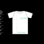 Tshirt-Sizing-Vector
